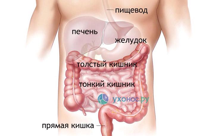 Кишечная инфекция ротавирусной этиологии лечение thumbnail