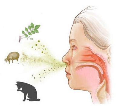 Почему чешется нос внутри
