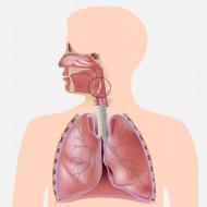 Синдром надгортанника симптомы