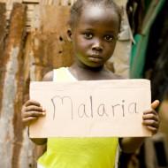 Что такое малярия{q} Симптомы, причины, профилактика и лечение
