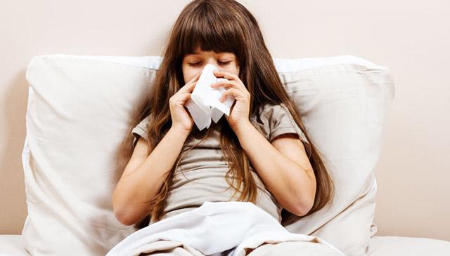 Лихорадка одного дня у взрослого